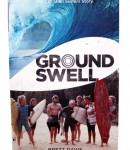 Groundswell book